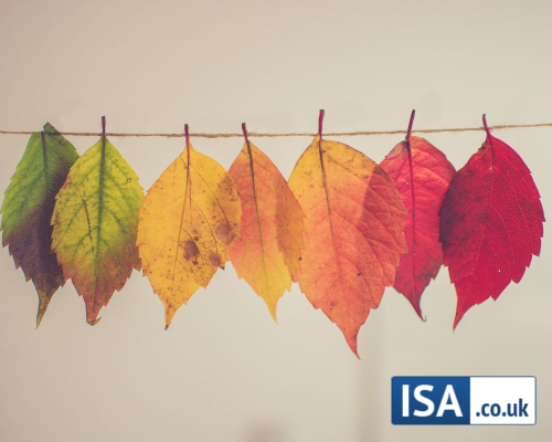 Autumn Investments: The Top Funds by ISA Type for September 2020